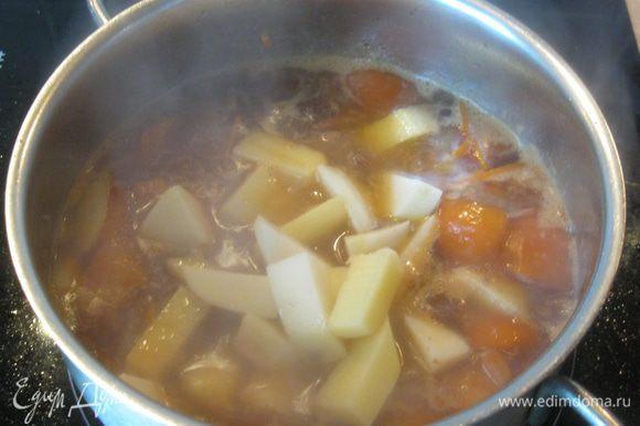 Потом положил морковь, помидор, немного обжарил, влил полстакана горячей воды и посолил. Вообще-то нужно было сварить бульон, но мне это тяжеловато. В кипящее рагу положил картошку и оставил тушиться на среднем огне под крышкой.