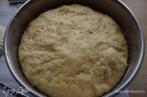 Всыпаем муку (500 г), замешиваем тесто, накрываем полотенцем и ставим в теплое место подходить.