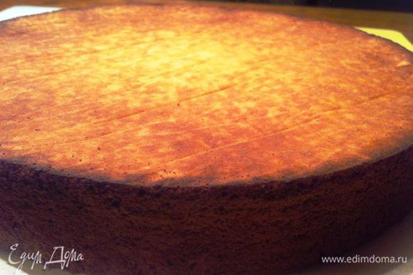 """Выложить получившееся тесто в пекарское кольцо. Испечь бисквит в течение 40 мин. Готовый бисквит оставить остужаться, перевернув его (у меня проблематичная духовка, даже очень, поэтому мой бисквит по краям """"подзагорел"""")."""
