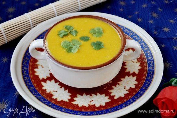 Разлить суп по тарелкам, украсить листиками кинзы. Подавать немедленно! Приятного аппетита!