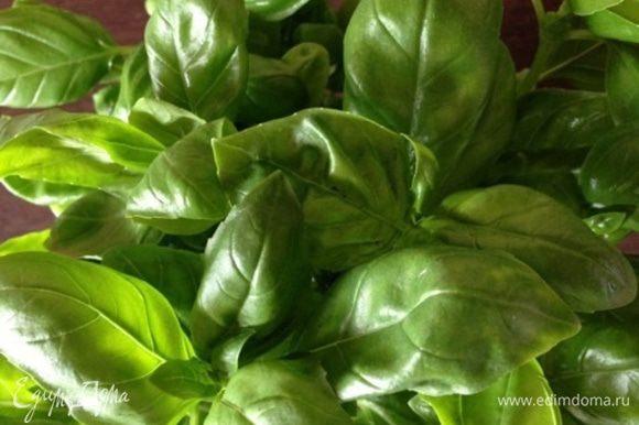 Для этого рецепта я брала большой пучок зеленого базилика с крупными листочками. С фиолетовым получится вообще интересный цвет, в следующий раз сделаю с ним!!