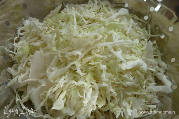 Капусту нашинковать. Капусту выложить в большой дуршлаг для пасты. Посыпать солью и хорошо перемешать. Дать по стоять часа 2-3 . Капуста сильно уменьшится в объеме. Промыть капусту в холодной воде и хорошо просушить на полотенце или в специальной сушилки для салатов.