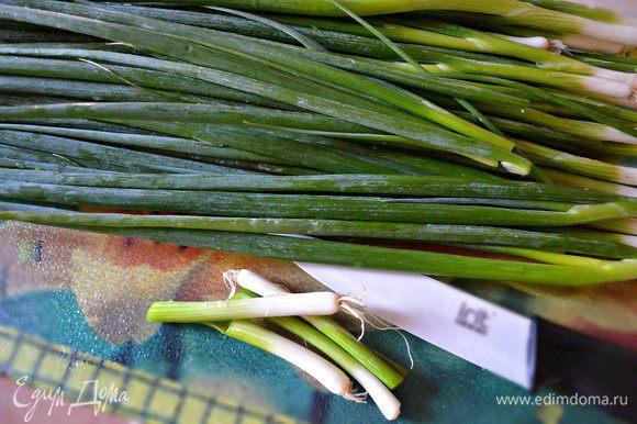 Нарезаем зелёный лук (белая часть лука нам не понадобится). Всё перемешиваем в миске, добавляем соль, чёрный молотый перец. По желанию можно дополнительно в начинку вбить 1 небольшое сырое яйцо.