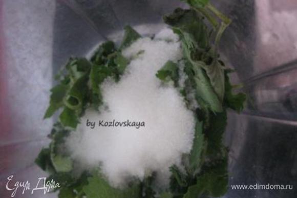 Отмерить стаканом (250 г) 1.5 стакана листьев мяты, слегка утрамбовывая. Промыть, обсушить. В несколько этапов измельчить мяту в блендере с сахаром (100 г из общего количества сахара).