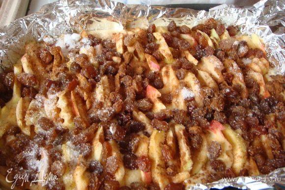 Вылить тесто сверху яблоки и изюм между яблок,посыпать корицей.