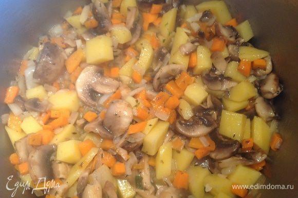 Переложите в кастрюлю, добавьте 600 мл горячей воды или грибного бульона и варите до готовности картофеля, у меня варилось 20 минут.