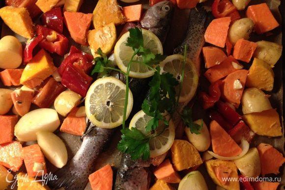 Духовку разогреть до 170°С. Выпотрошенную форель промыть под холодной водой, вытереть насухо и посолить снаружи и изнутри. Обложить рыбу травками по вкусу, примерно половину засунуть в брюшко. То же проделать с дольками лимона, спрыснуть оливковым маслом. Выложить на противень, выстланный бумагой для выпечки. Овощи выложить на противень вокруг рыбы.