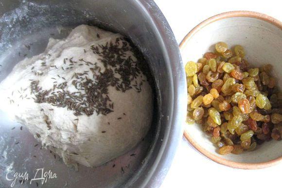 К тесту добавить тмин, изюм, хорошо перемешать. Накрыть посуду с тестом полотенцем на 1 час.