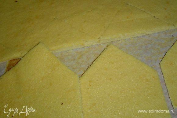 Корж необходимо разрезать вдоль на две равные части, аккуратно выровнять края. Можно приступать в вырезанию домиков для короны.