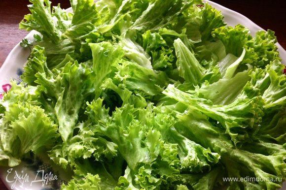 Промытый салат рвем руками на кусочки и выкладываем на широкое блюдо.