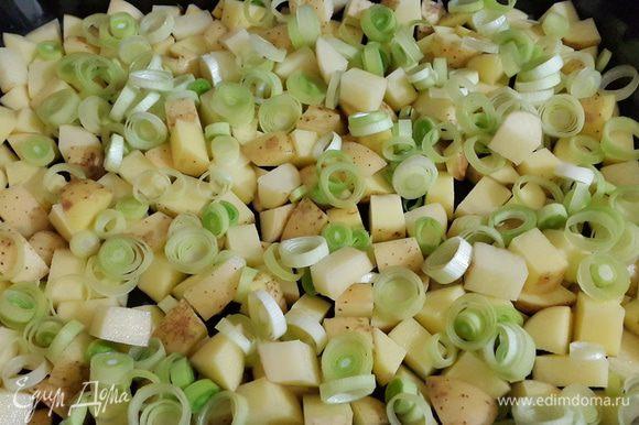 Картофель поем щеточкой, режем кубиками и выкладываем на противень. Смазывать масло не нужно. Сверху выкладываем нарезанный колечками лук-порей.