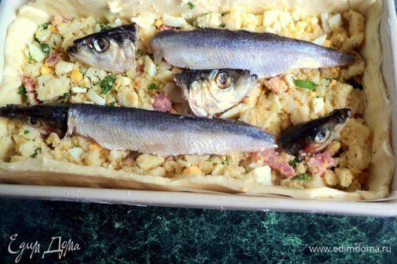 Затем снова начинку и филе. Сверху установить головы рыбок. Полить начинку сухим белым вином.