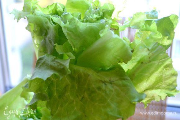 Промываем листья салата.