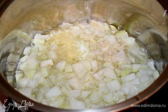 В большую кастрюлю с толстым дном налить масло. Обжарить лук и чеснок до прозрачности.