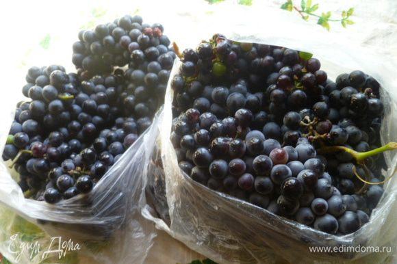 Виноград у меня синий, винный. Слегка недозрелый, с плотной мякотью. Но можно брать любой.