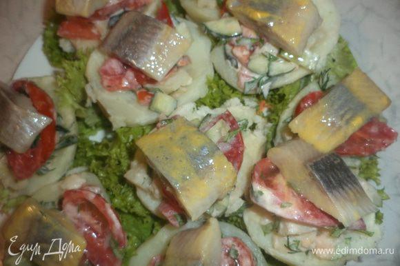 Наполнить половинки картофеля овощной массой, украсить ломтиками помидора, кусочками селёдки и зеленью петрушки.