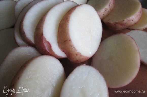 Тщательно моем кожуру картофеля — запекать будем в ней. Нарезаем кружочками, толщиной 1,5 см.