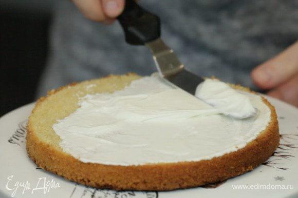 Собираем торт. Разрезаем бисквит на три части и смазываем коржи кремом.