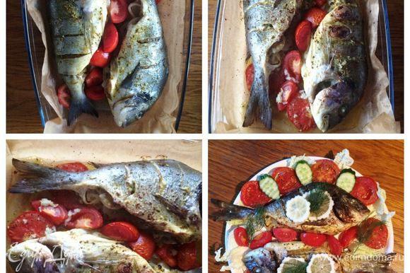 Отправляем рыбу в разогретую духовку до 200°C и выпекаем минут 30. Следим за своей духовкой, при надобности временами накрываем фольгой, чтобы не подгорела. Готовую рыбу подаем сразу же, украсив по желанию лимоном и свежим укропом.