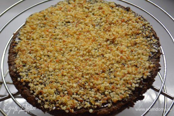 Бисквит вырезать кольцом диаметр 16 см (т.е. на 2 см меньше, чем будет форма торта). Шоколад растопить и смазать поверхность бисквита, посыпать сухим миндальным пралине.