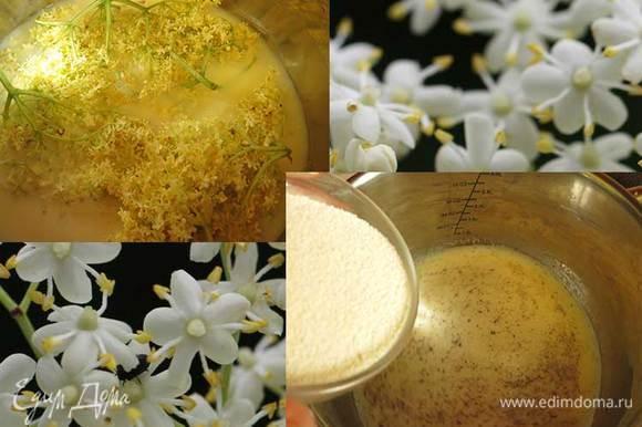 Нагреваем молоко с соцветиями, вынимаем цветы, насыпаем сахар, ванильный, перемешиваем, всыпаем манку, варим, помешивая.