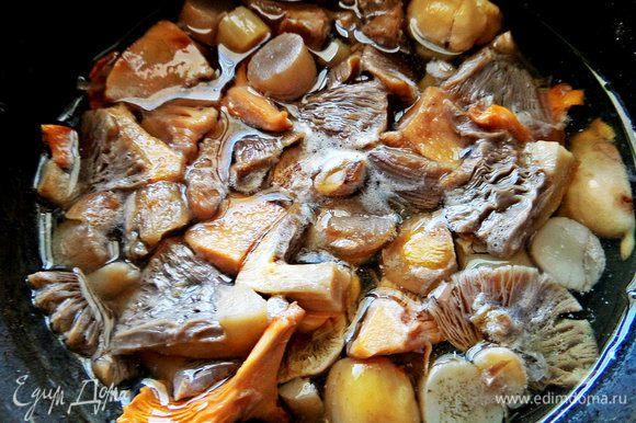 Грибы чистим, моем в 3 водах, отделяем шляпки, делим пополам или на четверти, варим минут 10. У меня сбор: лисички, лесные шампиньоны, польский гриб.