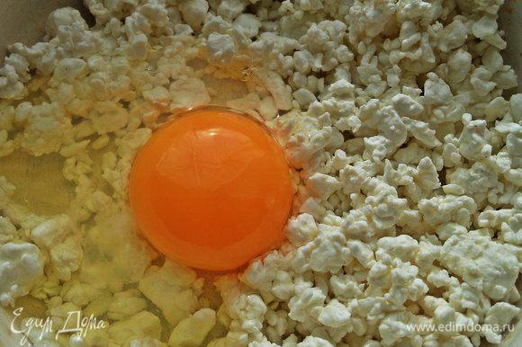 Для начинки в творог «Углече Поле» вбить яйцо.