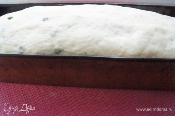 Вводим мелко нарезанный зеленый лук, перекладываем тесто в смазанную маслом форму. Оставляем подняться на 40 минут. В это время разогреваем духовку до 200°С. На фото тесто после 40-минутной расстойки. Тесто очень нежное, боится встрясок, поэтому аккуратно с ним обращаемся.