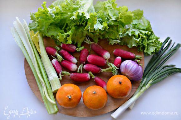 Помыть и почистить овощи, зелень.