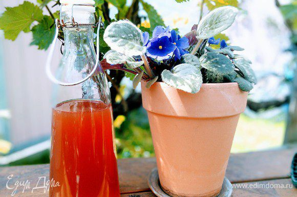 Коктейльный бокал наполнить наполовину льдом. Влить сироп, белое сухое вино, развести водой, украсить ломтиком ананаса или клубники.