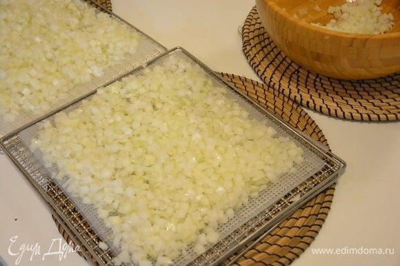 Разложить нарезанный лук по сетчатым листам.