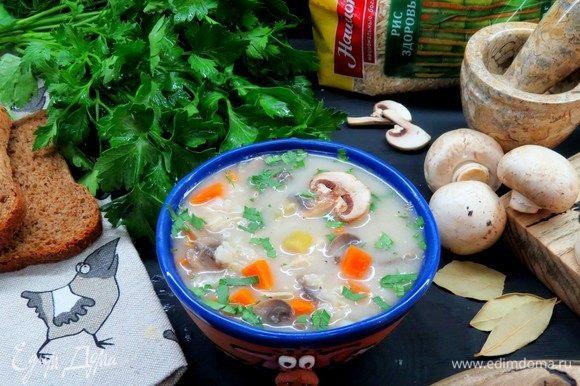 Украшаем суп мелко нарезанной зеленью петрушки, подаем! Очень вкусно и питательно, приятного аппетита!