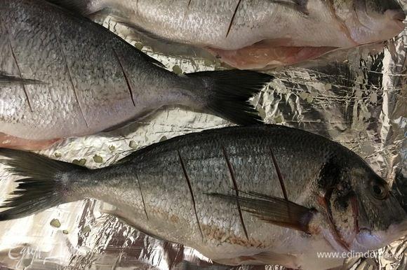 Укладываем рыбу на противень, делаем надрезы и смазываем верх оливковым маслом.