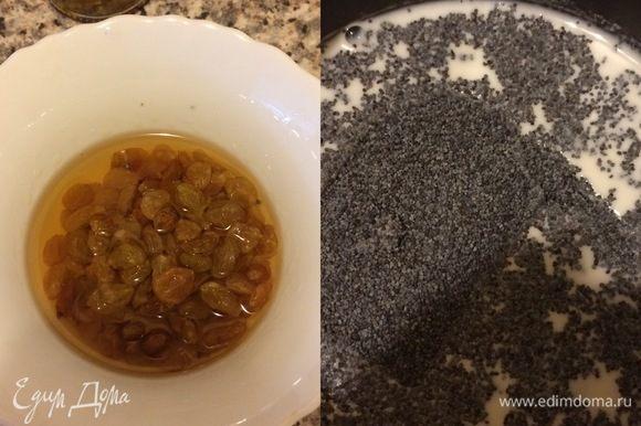 Изюм вымыть, залить бренди, накрыть фольгой и оставить на 3-5 часов. Мак залить молоком, поставить на огонь и варить 4-5 минут, помешивая.
