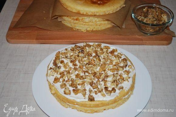 Второй корж прослаиваем кремом и посыпаем корж поджаренными грецкими орехами (50 грамм орехов на один корж).
