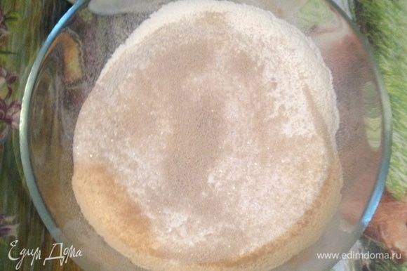 Просейте муку в миску и смешайте с сахаром, солью и сухими дрожжами. Влейте теплое молоко и начните замешивать тесто.