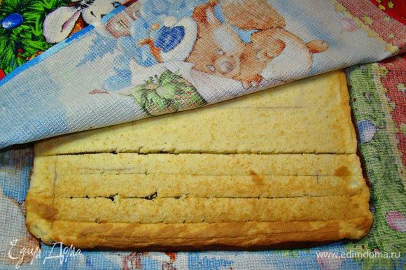 Готовый бисквит вынуть из духовки, перевернуть и освободить от пекарской бумаги. С одного края по всей длине сделать 4–5 неглубоких надреза. Накрыть полотенцем и оставить остывать.