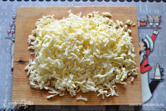 Моцареллу для пиццы натрите на крупной терке.
