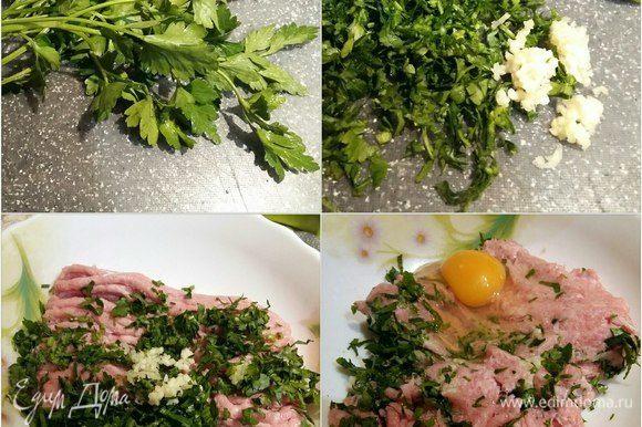 Сделаем фрикадельки. Зелень петрушки промыть, нарезать, чеснок пропустить через пресс, все добавить к фаршу из индейки, можно взять готовый, можно самим накрутить. Добавить 1 яйцо и все хорошо смешать.