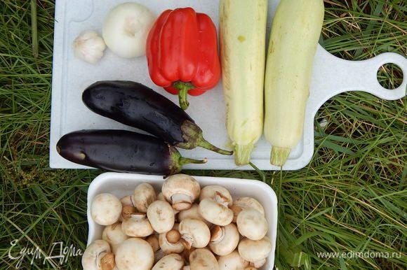Все овощи (кроме помидоров) помыть и обсушить.