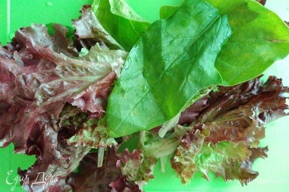 Листики салата хорошо промыть, обсушить или порвать руками на тарелку.