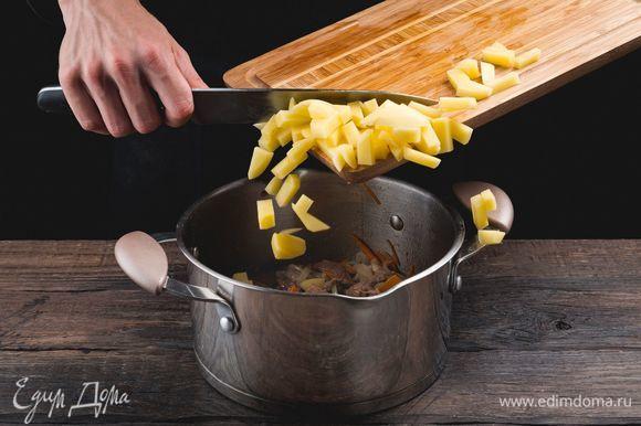 Добавьте картофель, залейте горячей водой и поставьте вариться на среднем огне.