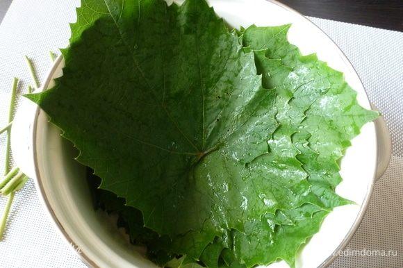 Виноградные листья промыть, обрезать черешки, залить кипятком и оставить, пока вода не остынет до комнатной.