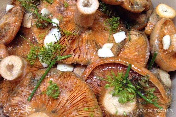 Тут вот видно, сколько чеснока, хрена и укропа на слой, ну, и как выглядит примерно правильное количество соли на слой грибов. Не забываем вдыхать ароматы:)