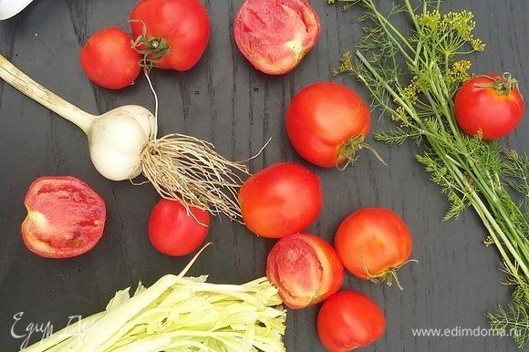 Приготовим все необходимые продукты: небольшые неповрежденные томаты, свежий укроп «прямо с грядки», сельдерей, чеснок, лавровый лист, черный перец, соль и сахар. Совсем немного ингредиентов для такого вкусного результата!