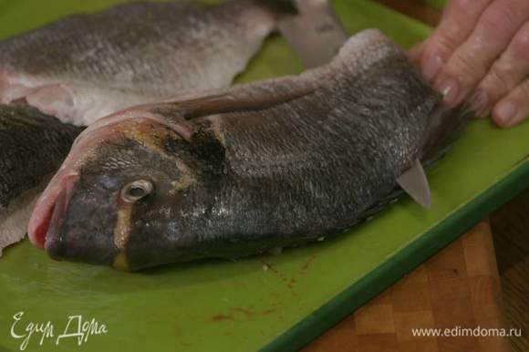 Филе дорады срезать острым ножом вдоль хребта.
