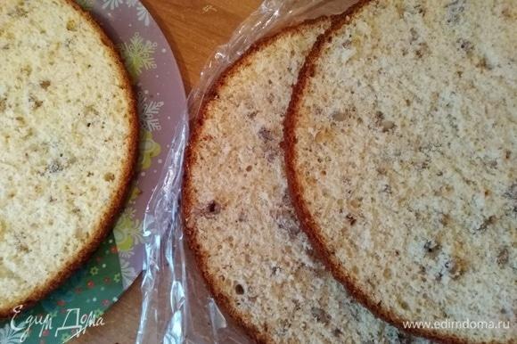 Разрезать на 3 коржа. Можно на 2 по желанию. Форму для выпечки брала 26 см, и бисквит получился очень высоким.