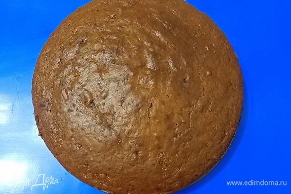 Форму (диаметр — 20 см) застелить бумагой для выпечки и смазать маслом. Переложить тесто и разровнять верх. Выпекать в горячей духовке при температуре 170°C в течение 1 часа до готовности. Остудить и разрезать на 4 коржа.