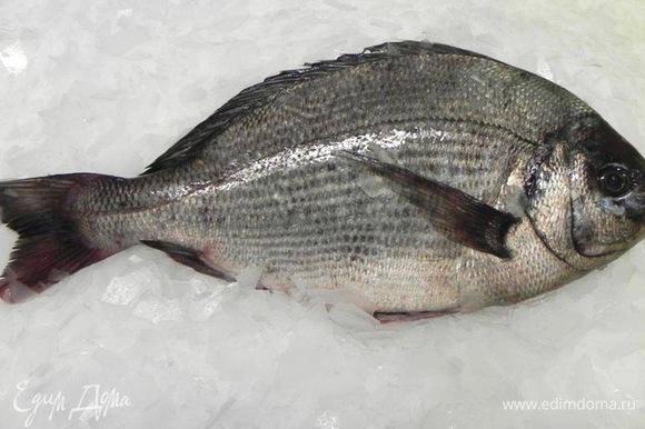 Рыбу выбираю очень свежую, от этого зависит вкус блюда. Охлаждаю. При помощи острого тонкого ножа разрезаю рыбу вдоль хребта, очищаю от кожи. Получается красивое филе. Можно купить готовое филе, но нужно быть уверенным в его свежести.