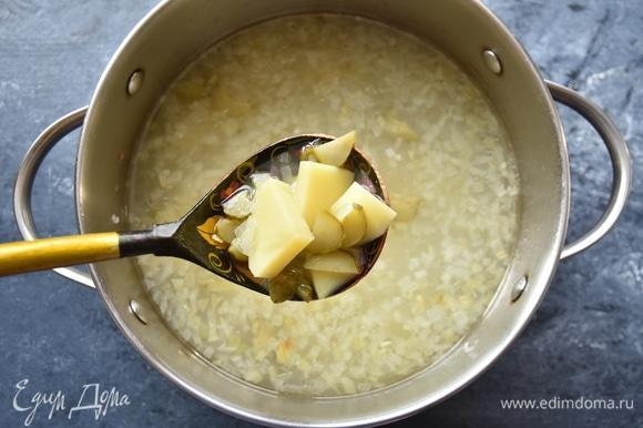 Влила рыбный бульон, выложила нарезанный кубиком картофель и варила до готовности картофеля.